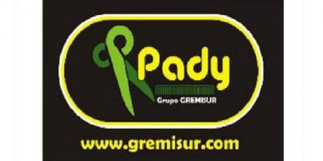 Gremisur Pady